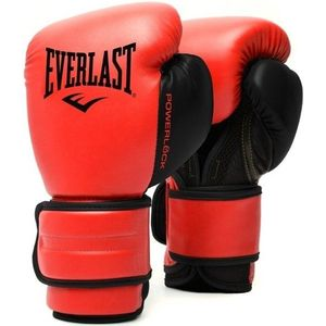 Everlast Powerlock 2R Training Gloves Mănușă de box și MMA imagine