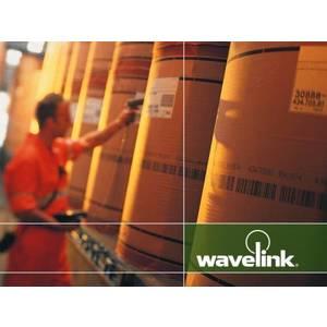 Licenta Datalogic Wavelink Industrial Browser (standalone) imagine
