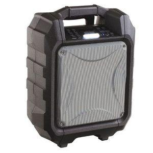 Boxa portabila Clip Sonic TES182, Bluetooth, 30W, Radio FM (Negru/Argintiu) imagine